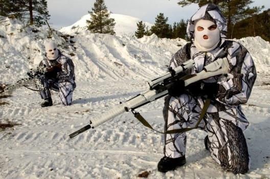 mountaintroops.jpg
