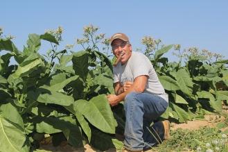 tobaccofarmer.jpg