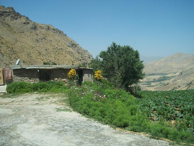 Down-Grid Kurdistan.JPG